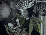Stacey Steers, Edge of alchemy, collage