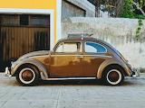 Volkswagen VW Beetle Bug Car Auto Vehicle.