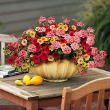 ^ Colorful flower arrangement