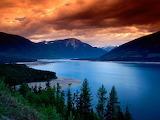 Lake Mountain Trees