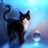 Pretty Little Kitty...