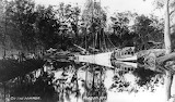 Wharf and timber loading area on Erina Creek 1908 CCLS Collectio