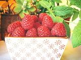 Raspberries @  Menjar a Cala Blanca