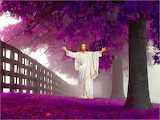 Jesus-forest-christ-god-nature-religion