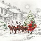 Santa has landed
