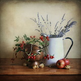 Autumn still life with berries and lavender