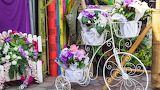 Flowers, bike, bouquet, flowers, floral