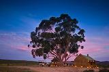 Bushmans lodge South Africa