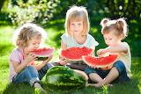 Children, girl, watermelon, summer, friends, beautiful, sun