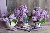 Books, lilac, scissors, bouquets, flowers