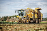 Sugar Beet Harvestor