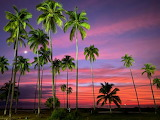 Vibrant Sunset - Puerto Vallarta