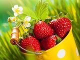 ☺♥ Strawberries...