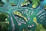 Aerial of floating village Cai Beo Lan Ha Bay Vietnam