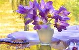 Window, vase, bouquet, beautiful flowers, rain
