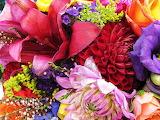 Leslie's Bouquet Photograph by Joanne Riske