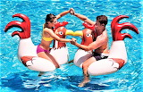 #Chicken Fight Pool Floats
