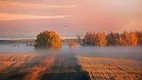 Alberta Morning