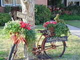 Old-bicycle-garden-decor
