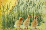 Digital art chicks grass