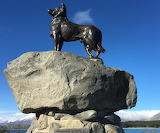 Monument to Collie Dogs for Mackenzie Country