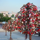 Lock tree in Moscow, Russia