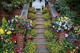 Walsall garden steps