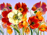 drawn-flowers-drawing wild-flowers