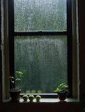 It's Raining Outside
