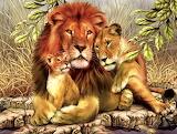 Family Pride...