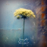 Flower tumblr delicatuscii