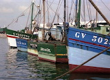 Fishing Boats. Concarneau