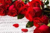 ☺♥ Roses...