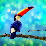 ♥ Colorful Profile...