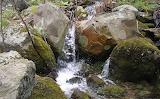 Torino Creek