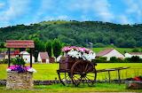 Rural landscape houses