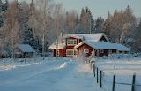 Wintertime - Photo from Piqsels id-jjqsy