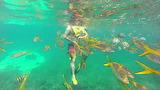 Snorkeling in CocoCay, Bahamas