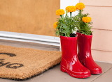 ^ Marigolds in old rain boots
