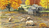 Sheep in autumn grazing