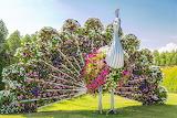 Miracle-Garden-In-Dubai