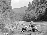 Children playing on the river bank, Mangamahu, late 1930s