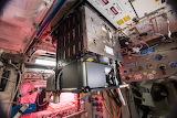 Space ESA ISS Fluid science revamp