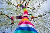 Yarn bombing tree