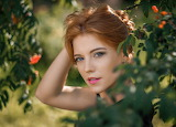 Summer Redhead