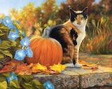 Lucie Bilodeau cat and pumpkin