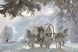 Riding three horses in winter