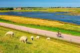 Texel Island, Netherlands