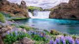 Hjálparfoss waterfalls