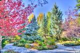 ^ Park, Vail, Colorado